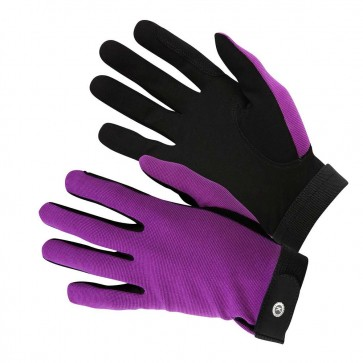 KM Elite All Rounder Gloves Purple