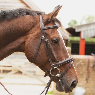 KM Elite Competition Bridle Havana