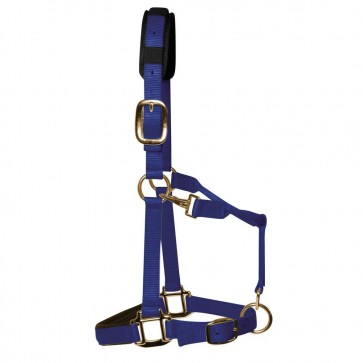 KM Elite Padded Headcollar Royal Blue