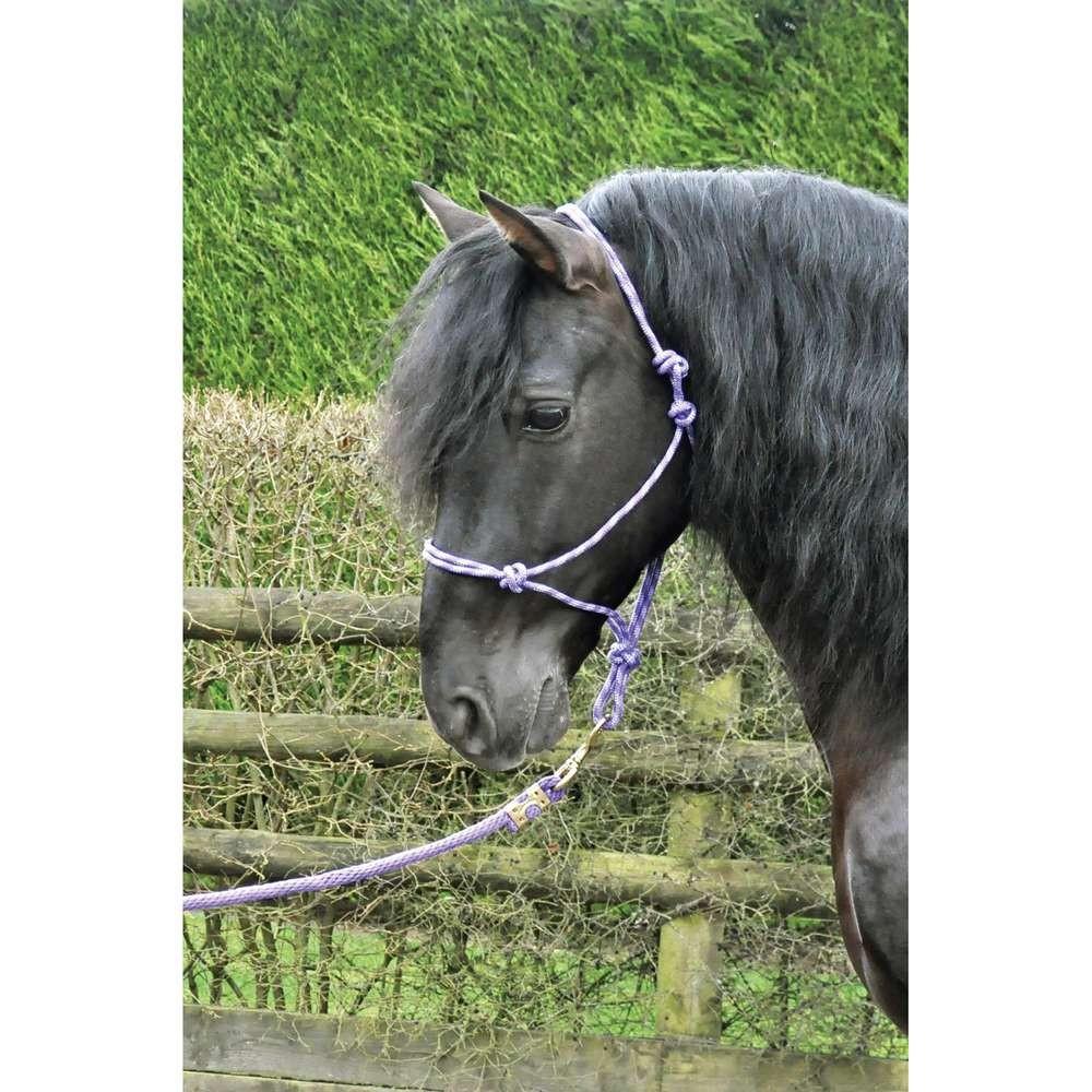 KM Elite Rope Halter Black/Grey