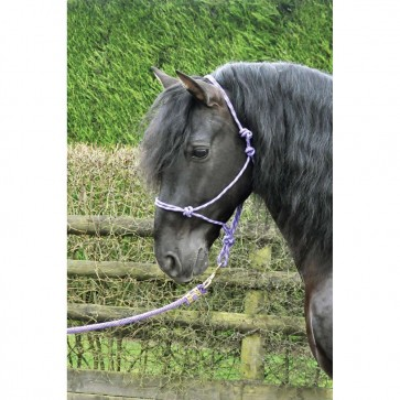 KM Elite Rope Halter Purple/Lilac