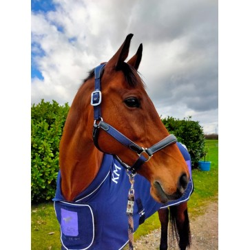 Navy Headcollar with Contrast Black Leather