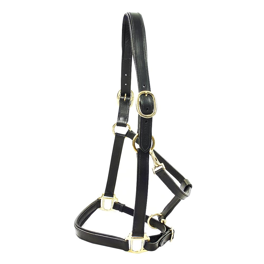 Primera Padded Leather Headcollar Black